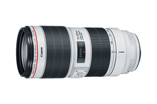 Canon EF 70-200mm f/2.8L IS III USM #2