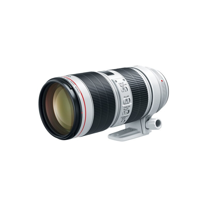Canon EF 70-200mm f/2.8L IS III USM #1